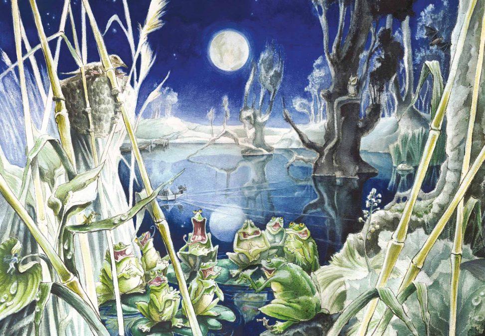 Froschkonzert im Teich