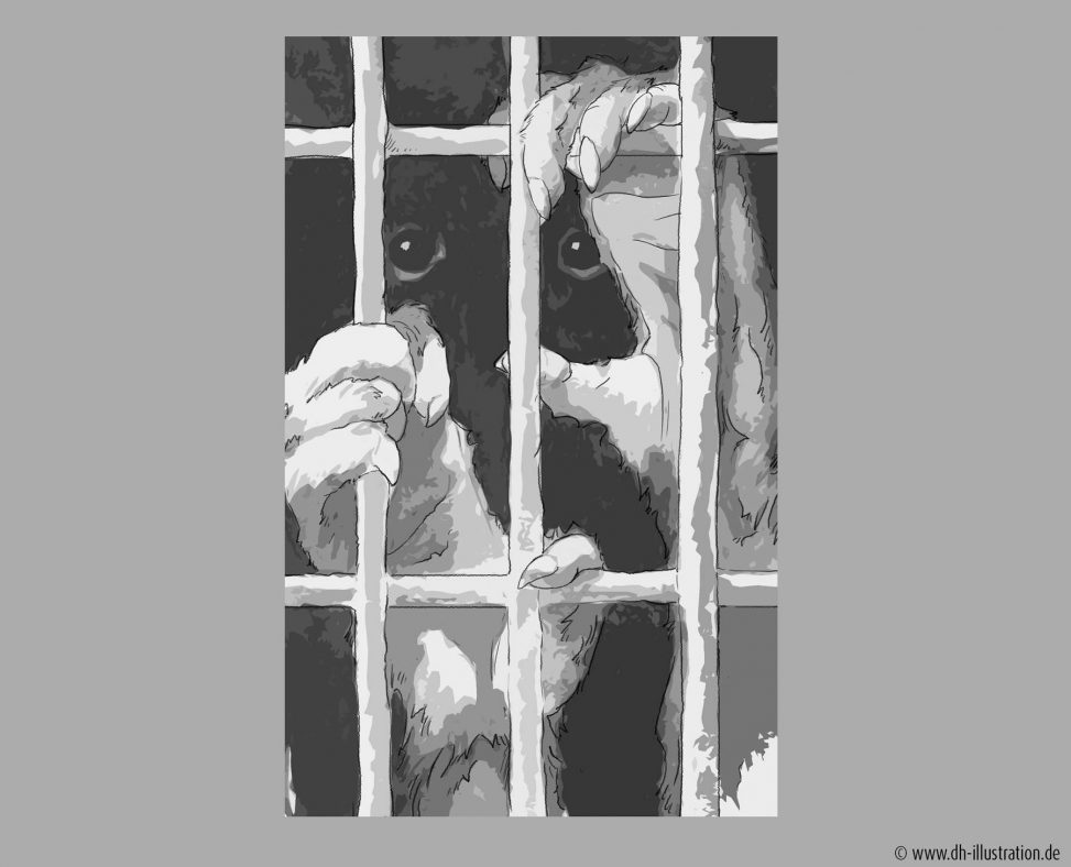gefangener Affe
